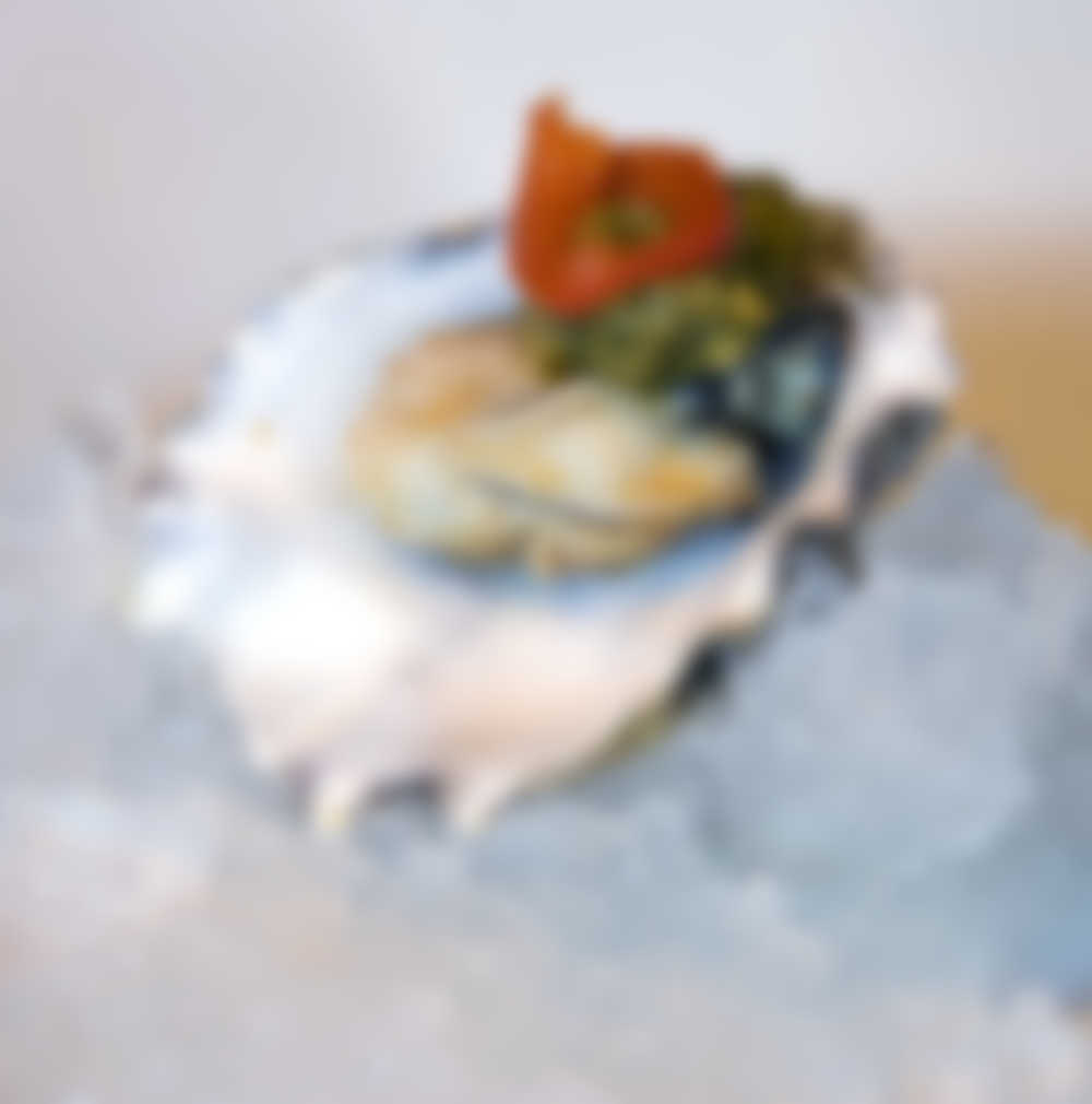Gourmet Oysters